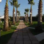 Panoramica_giardino_1